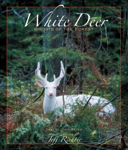 white-deer-full-cover